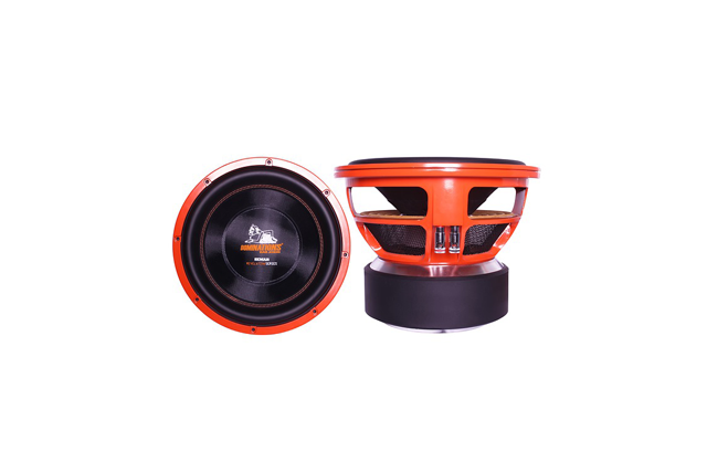 The Best 10 Inch Subwoofers