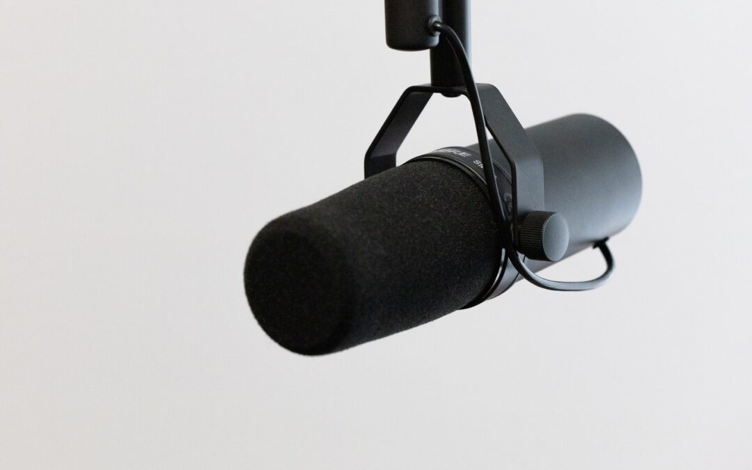 The 12 Best Condenser Mics: What You Need to Know
